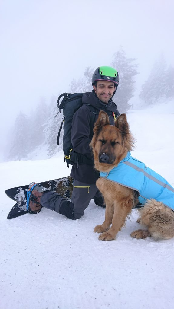 Dog with owner in snow riding happy powder ski snowboard off piste backcountry