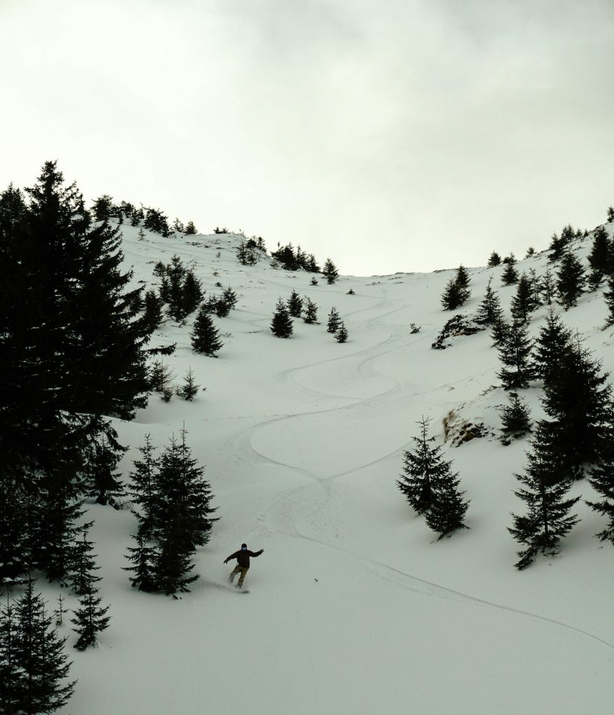 Ciucas forest snowboard lines