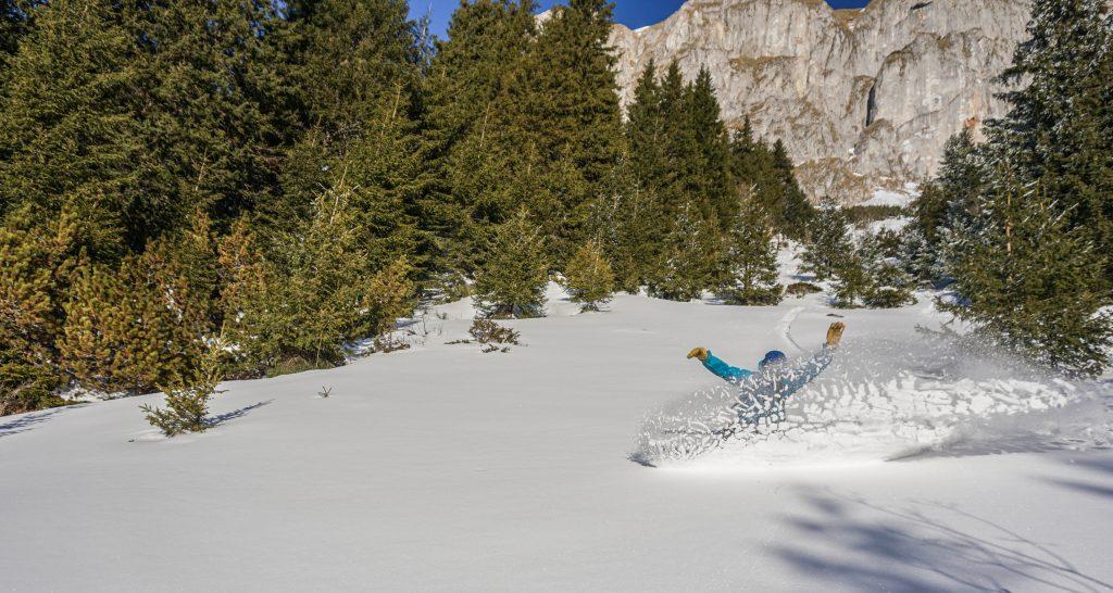 Powder snow in Bucegi Mountains